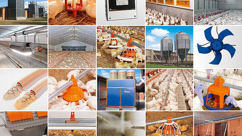 Oplossingen voor de vleeskuikenhouderij