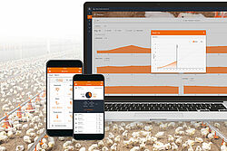 Productiegegevens met FarmBookpro analyseren.