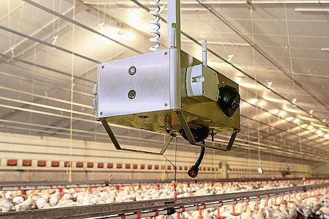 [NEW!] ChickenBoy analysis robot